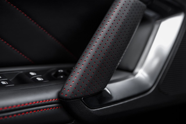 Sensory pleasure - Materials - Peugeot 308 GTi door details